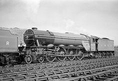 10 Trains Pins you might like Electric Locomotive, Diesel Locomotive, Steam Locomotive, Steam Trains Uk, Old Steam Train, Steam Railway, Train Art, Old Trains, British Rail