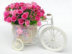Best value Bicycle Party Decorations – Great deals on Bicycle Party Decorations from global Bicycle Party Decorations sellers Flower Basket, Flower Pots, Bicycle Party, Cheap Vases, Bicycle Basket, Clothes Pictures, Rattan Basket, Third Birthday, Small Flowers