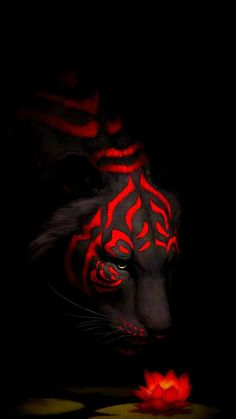 Aesthetic Tiger Tribal with Red Rose Wallpaper Beste Iphone Wallpaper, Tiger Wallpaper, Eyes Wallpaper, Apple Wallpaper, Dark Wallpaper, Wallpaper Quotes, Oneplus Wallpapers, Hd Wallpapers 1080p, Iphone Wallpapers