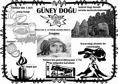 Güneydoğu Anadolu bölgesi Primary School, Pre School, Tabu, Montessori, Social Studies, Geography, Crafts For Kids, Education, Culture