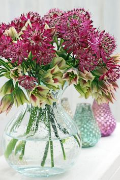 A Bunch for the Weekend-# 57-Astrantia and Nectaroscordum-Ingrid Henningsson-Of Spring and Summer