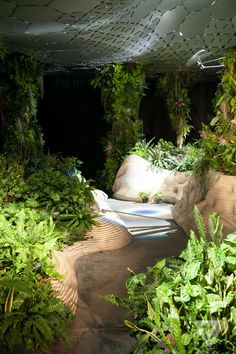 This is cool. James Ramsey is brimming with confidence. He says so as he gazes at the lush, undulating mini-forest he helped build in the middle of an empty warehouse in Manhattan's Lower East Side. The Lowline...