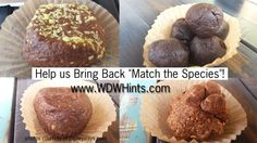 """WDW Hints Help us Bring Back """"Match the Species""""! - WDW Hints"""