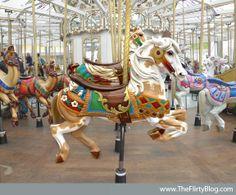pinto-looff-carousel-horse-san-francisco.JPG (576×478)