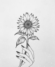Sunflower Sketches, Sunflower Drawing, Sunflower Tattoos, Art Drawings Sketches Simple, Pencil Art Drawings, Cute Drawings, Wreath Drawing, Neue Tattoos, Tattoo Project