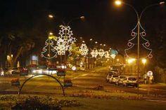 Projeto paisagístico para as festividades do Natal Maringá 2014 é executado por…