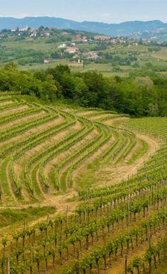 Travel to Friuli