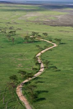 [Tanzania]