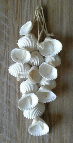Sweet Shells... Drill holes in shells and string together - Kitchen post