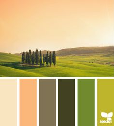 tuscan tones Color Palette by Design Seeds Paint Color Palettes, Colour Pallette, Colour Schemes, Color Combos, Color Patterns, Tuscan Design, Design Seeds, World Of Color, Color Swatches