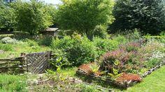 Herb garden-medieval
