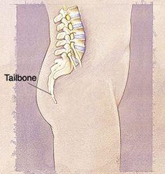 Understanding & Treating Tailbone Pain http://www.healthline.com/health/back-pain/tailbone-pain#Overview1