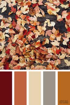 59 Pretty Autumn Color Schemes { Shades Of Autumn Leaves } color palette orange autumn , red autumn Fall Color Palette, Colour Pallette, Color Palate, Colour Schemes, Color Combos, Autumn Leaf Color, Autumn Leaves, Autumn Colours, Wedding Colors