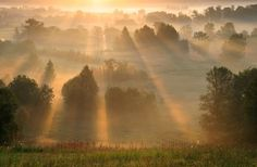 a beautiful morning Beautiful Landscapes, Beautiful Images, Beautiful Scenery, Pretty Pictures, Cool Photos, Pretty Pics, Amazing Photos, You Make Beautiful Things, My Father's World