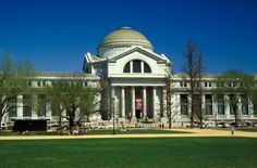 Dinosaur bones, fossils, a butterfly garden, the Hope Diamond, the mysterious of the deepest oceans, all these natural wonders and more are found under the dome of the National Museum of Natural History on the National Mall.