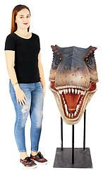 Large T-Rex Head on Stand Mouth Open Mouth Open, Animal Statues, Animal Heads, T Rex, Hand Painted