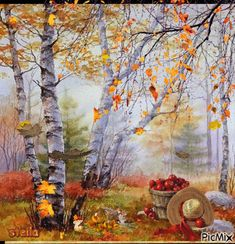 Create personalized and animated photo montages. Fall Images, Fall Pictures, Autumn Rain, Autumn Leaves, Winter Gif, Autumn Scenes, Beautiful Gif, Hello Autumn, Autumn Inspiration