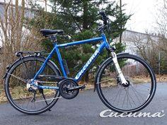 Darmstadt SV 98 e.V. Bike ... Cucuma Chili special Design and official Soccer Bike www.cucuma.com
