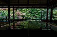 rurikouin  temple Japanese Gardens, Kyoto, Temple, Temples, Japan Garden