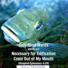 Only good words which are necessary for edification come out of my mouth Ephesians Bible Verses For Women, Encouraging Bible Verses, Bible Verses Quotes, Bible Verses For Depression, Christian Affirmations, Ephesians 4, Verse Of The Day, Stress Management, Word Of God