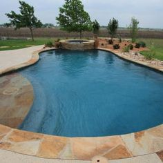 Free-Form Pool with Tanning Ledge #3