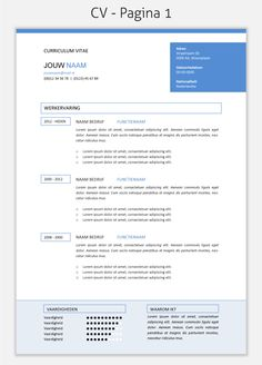 CV template 294 om te downloaden