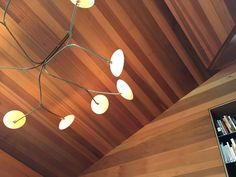 A year-long commitment is behind the Lily light, Lemon Light and Fritta pendants created for the esteemed architect Pip and his wife Aileen Cheshire. Organic Form, Bookshelves, Track Lighting, Challenge, Lily, Brass, Ceiling Lights, Cleaning, Warm