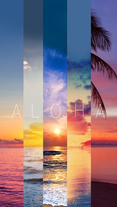 Aloha Summer Stripes iPhone 5 Wallpaper