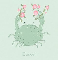 Cancer, protective & loving