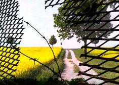 Felder, Country Roads, Kunst