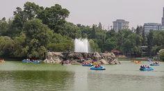Bosque y Zoológico de #Chapultepec, hermoso lugar en el corazón de #México DF, para respirar y relajarse en familia, así es mi tierra, así es México!!! Bienvenidos!!! Jesus Kamechuy  Forest and Chapultepec Zoo, beautiful place in the heart of Mexico City, to breathe and relax with your family, this is my land, this is Mexico !!! Welcome !!!  Tour By Mexico - Google+