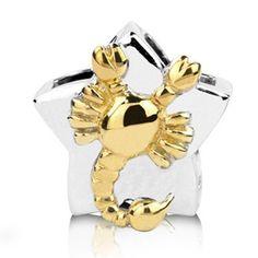 Sterling Silver-gold Scorpio Zodiac Bead Charm ARG http://www.amazon.com/dp/B005BE61B2/ref=cm_sw_r_pi_dp_5Zd4wb011SQTT