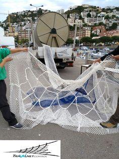 Nueva mirada al mar: Tiburón peregrino capturado accidentalmente en Calpe
