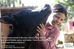 """""""My favorite animal is the cow.""""  http://www.soundproofcow.com/blog/?p=342"""