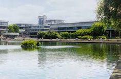 Image result for ucd belfield campus smurfit University College Dublin, Marina Bay Sands, Building, Travel, Image, Viajes, Buildings, Destinations, Traveling