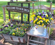 Pansies and Garden Junk www.organizedclutterqueen.blogspot.com