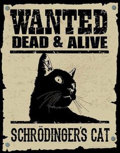 Wanted -- Dead AND alive.  Schrodinger's Cat