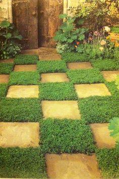 Pinterest the world s catalog of ideas for Checkerboard garden designs