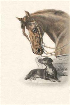 Dachshund Dog Dachshund And Horses On Pinterest