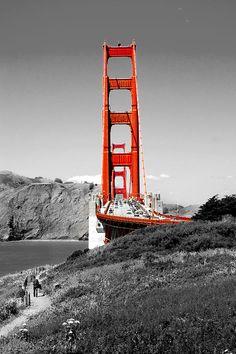 Golden Gate Photograph Billy