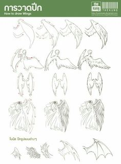 How to Draw Wings, text; How to Draw Manga/Anime