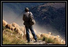 """""""...Con le pecore e un cane fedele tre amici sempre pronti nei pascoli sui monti a una spanna dal """"regno dei cieli"""" viveva felice così!..."""""""