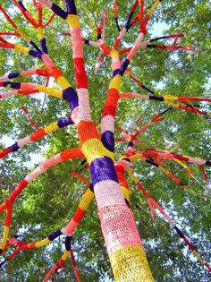 """If you're really bored, you can knit a """"coat"""" for a tree"""