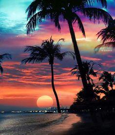 A beautiful sunset. Inspiration for art. Beautiful Nature Wallpaper, Beautiful Sunset, Beautiful Landscapes, Beautiful Places, Beautiful Scenery, Wonderful Places, Summer Wallpaper, Beach Wallpaper, Tree Wallpaper