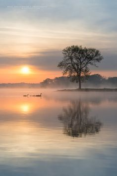 *🇺🇸 Sunrise and geese (near Boy Scout Island, Lake Manawa State Park, Council Bluffs, Iowa) by Buck Christensen Beautiful Sunset, Beautiful World, Beautiful Images, Nature Pictures, Cool Pictures, Landscape Photography, Nature Photography, Dental Photography, Photography 2017