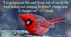LOVE this pic and the quote by C.S. Lewis about how prayer changes us.