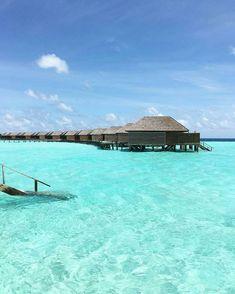 The maldives island - veligandu island resort honeymoon destinati Need A Vacation, Vacation Places, Dream Vacations, Vacation Spots, Places To Travel, Travel Destinations, Places To Visit, Tahiti, Island Resort