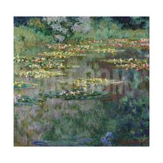 Le Bassin, 1904 Giclee Print by Claude Monet at Art.com