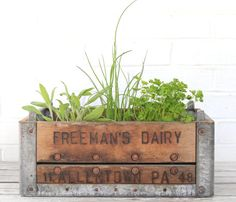 sweeeet metal and wooden crate used as herb garden.   How about a pop crate used as an herb garden?