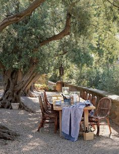 On a cool sun drenched evening under the majestic oaks drinks & dinner will be served by invite only eh Angels !?